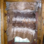 Shawl / throw / wrap - 100% natural alpaca - felted - reversible