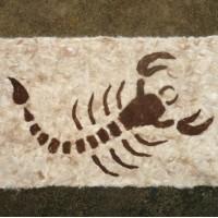 Tapis en alpaga : scorpion