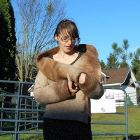 Coat / vest 100% natural alpaca - oversized collar