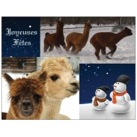 Alpaca postcard - Happy Holidays (French only)